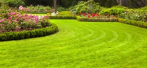 Freshly mowed lawn in a formal garden.; Shutterstock ID 88611505; PO: N/A; Job: BULK; Client: N/A; Other: BULK