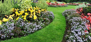 Colourful Flowerbeds and Winding Grass Pathway in an Attractive English Formal Garden; Shutterstock ID 116164459; PO: N/A; Job: RDL; Client: N/A; Other: RDL