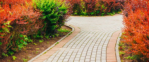 Garden landscaping in blackwood from a d landscapes driveways our landscape gardeners are fully qualified and highly skilled from simple trimming and clipping to new paving and construction we offer it all to you workwithnaturefo
